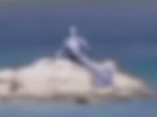 青い人魚の姿が、観光客が撮ったビデオに…!?