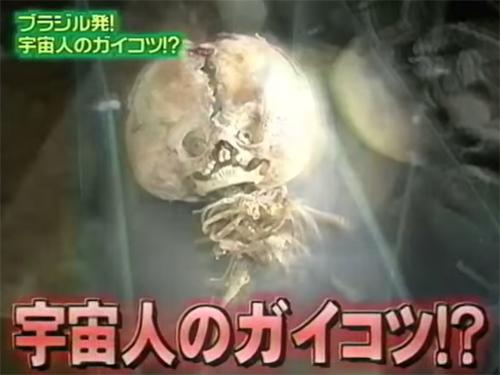 宇宙人!? 博物館の館長もETだと信じている奇怪な骸骨