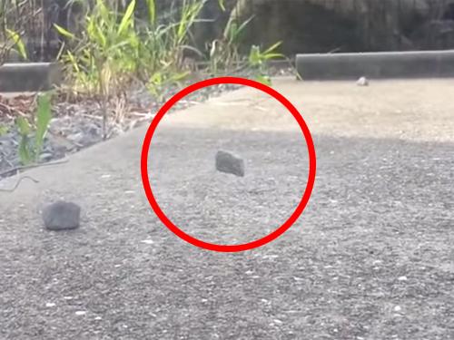 石が宙に浮いている! 摩訶不思議な怪奇現象!?
