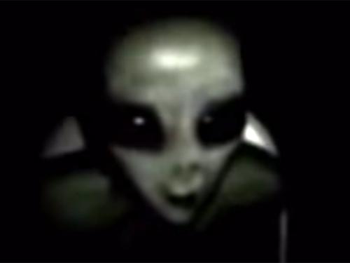 宇宙人が尋問されている、リアルなエイリアン映像