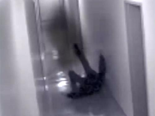 シャドーピープルに襲われた男! 無人の廊下で襲撃される!