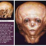 宇宙人と人間の混血種、スターチャイルド。母親が人間、父親は宇宙人?