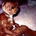 瀕死の宇宙人、イタリアの民家の庭で発見される!