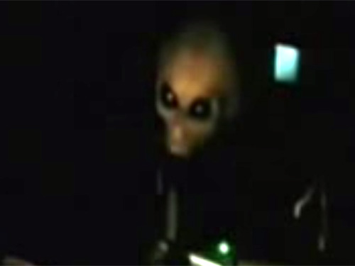 尋問される宇宙人グレイ! エリア51の流出映像か
