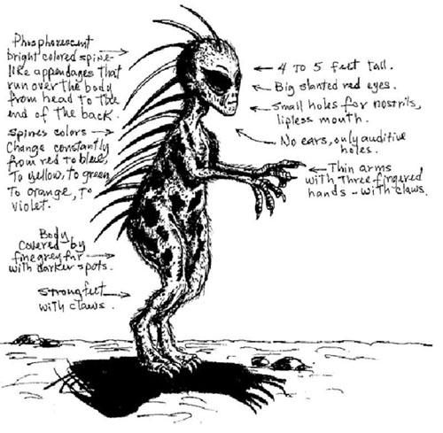 チュパカブラ、目撃者のスケッチ