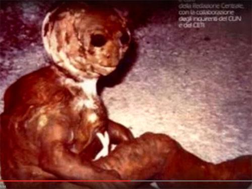 瀕死の宇宙人が、イタリアの民家の庭で発見される!