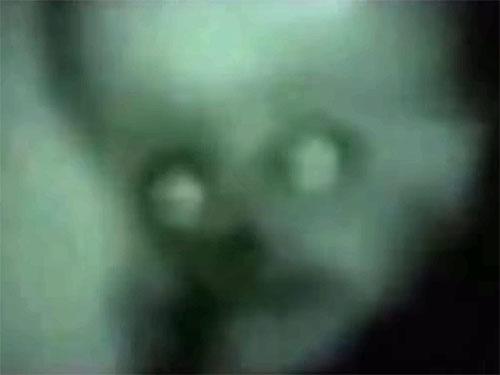 NASA極秘映像の宇宙人3