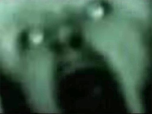 NASA極秘映像の宇宙人4