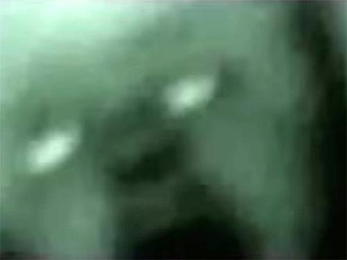 NASA極秘映像の宇宙人5