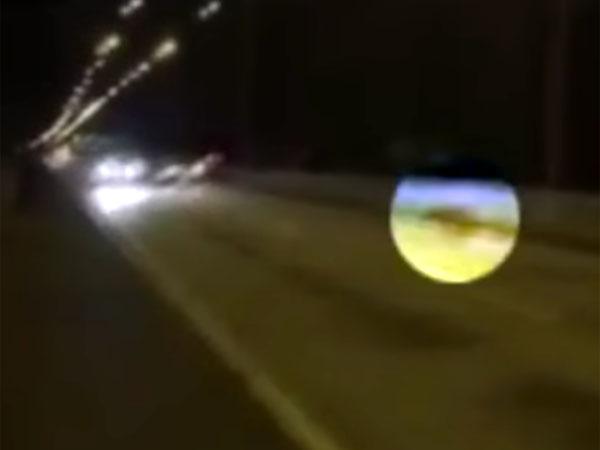 路上に現れた犬に向かって来る二台の車
