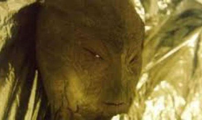 頭を殴られて、自宅に運ばれた宇宙人の顔