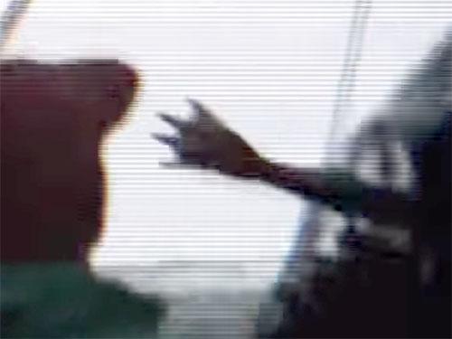 謎の半魚人、漁網に掛かった! 水掻きの手も映っている驚愕映像!