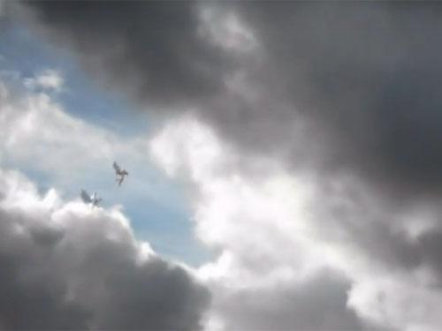 空を飛ぶ天使のような鳥人1