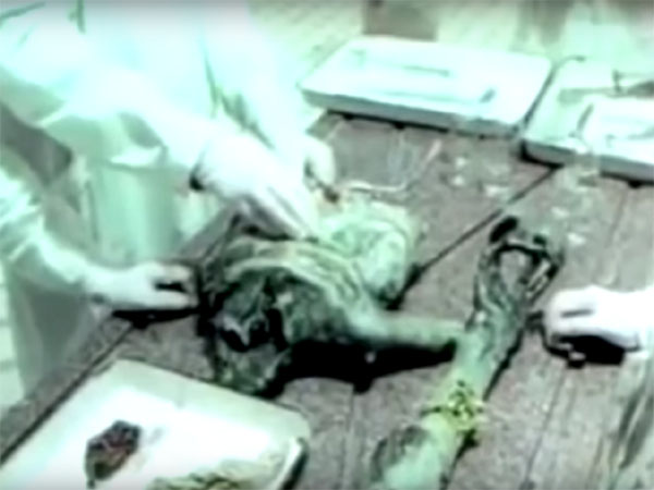 宇宙人解剖|ロシアのUFO墜落事件(ベレゾフスキー事件)