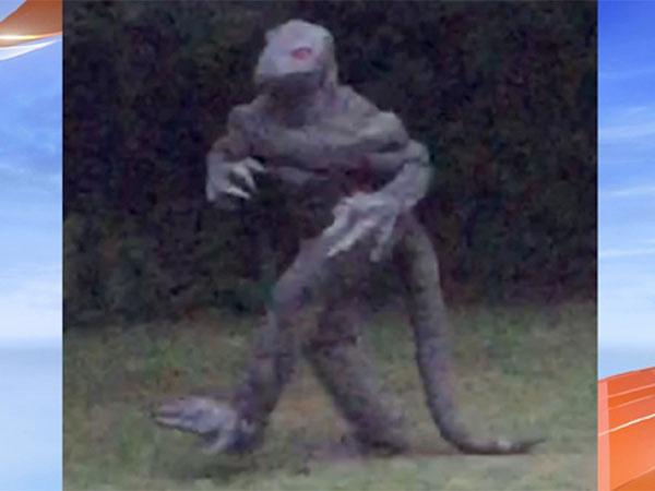UMAトカゲ男が再び現れた! 2本足で堂々と歩いている! 鮮明すぎる姿の驚愕写真!