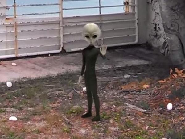 撮影者に手を振る宇宙人グレイ