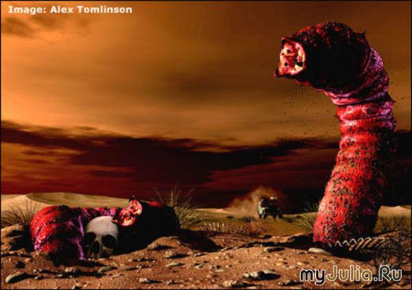 実在するUMA? ゴビ砂漠の殺人ミミズ、モンゴリアンデスワームの正体は、ミミズトカゲの変種か?