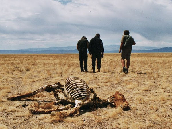 イワン・マッケール氏、モンゴリアンデスワームの探検時の写真