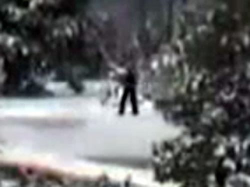 UMAビッグフットが四体! 米イエローストーン国立公園に出現