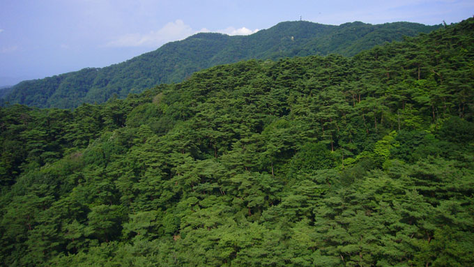 スカイフィッシュの目撃例が多い六甲山