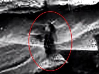 聖母マリアは火星人だった? 「火星の貴婦人」とファティマの予言の謎!