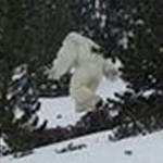 UMAイエティ(雪男)が、スペインのスキー場に出現! ハッキリと写っている姿に世界が驚愕!