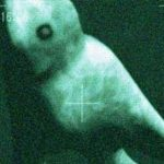 世界の巨大生物UMA  動画まとめ。巨大クモ男からクラーケンまで!