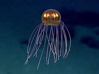美しく光る新種のクラゲ! マリアナ海溝深海に新種生物の姿が神秘的すぎる!