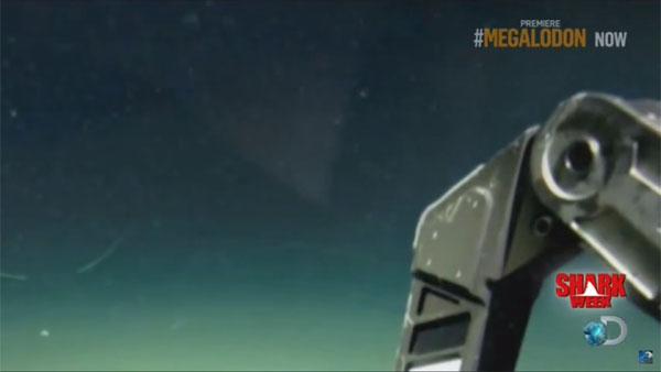 海底調査中に、メガロドンを撮影1