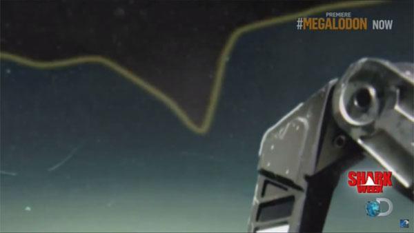 海底調査中に、メガロドンを撮影2