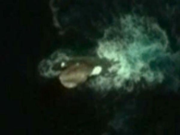 120mの巨大イカ! グーグルアースで発見! 伝説のクラーケンか?