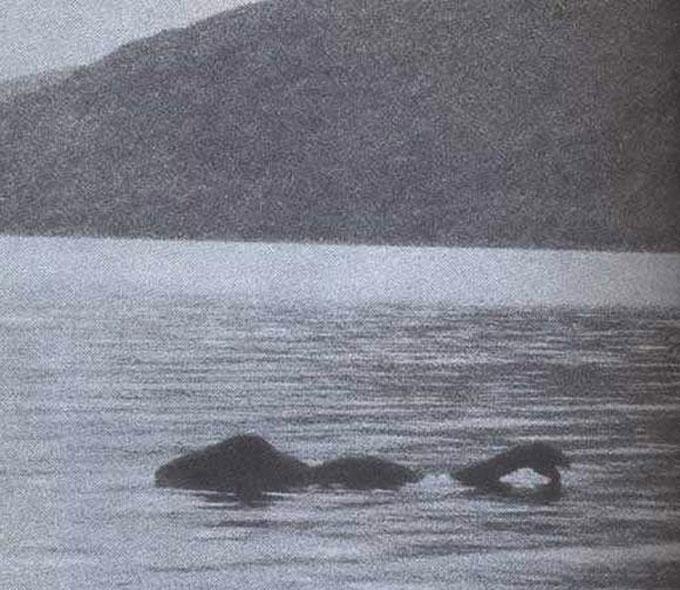 フランク・サ―ル氏が撮影したネッシーの写真