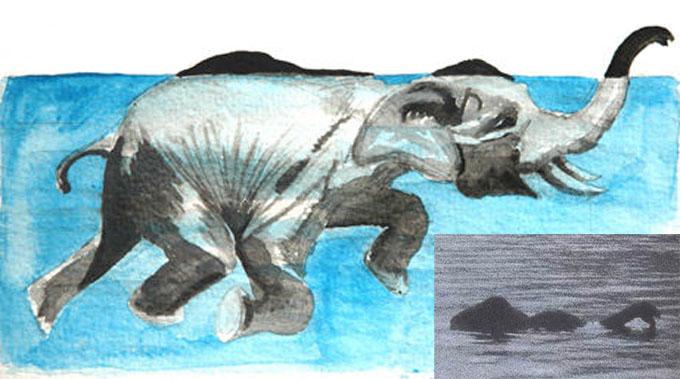 ネッシーの正体は水浴びをしている象?