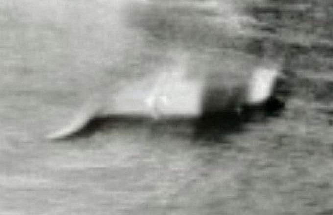 湖岸道路が開通した年に撮影されたネッシーの写真