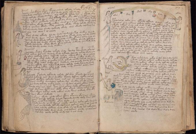 ヴォイニッチ手稿【第3部】生物学のページ1