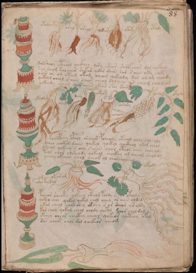 ヴォイニッチ手稿【第5部】 薬学のページ