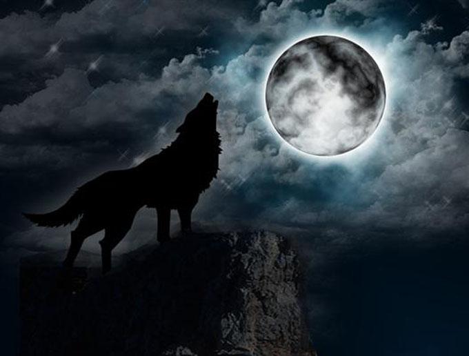 幽霊オオカミのイメージ