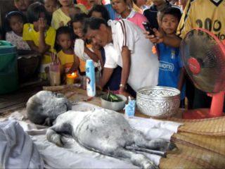 ベトナムにUFO墜落、宇宙人死体が住民に供養される! その真相は?