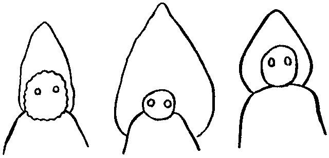 少年たちが描いたフラットウッズ・モンスターのイラスト