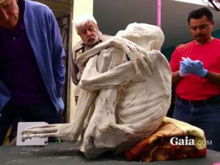 ペルーで発見された3本指の宇宙人ミイラ。DNA検査で人間と判明した?