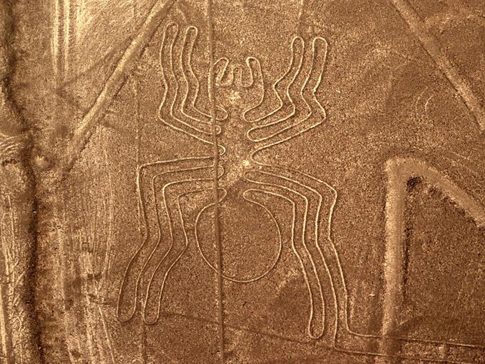 ナスカの地上絵の画像 p1_37