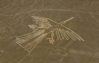 ナスカの地上絵の謎! いつ頃、どのようにして、何のために描かれたのか?