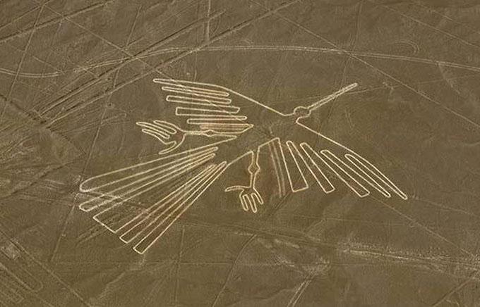 鳥のようなナスカの地上絵