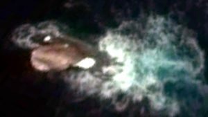 120mの巨大イカ! グーグルアースで発見! 伝説の海の怪物クラーケンか、超巨大ダイオウイカか?